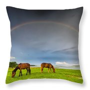 Rainbow Horses Throw Pillow by Evgeni Dinev