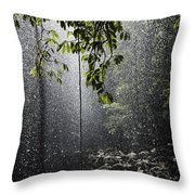 Rainforest, Bellingen, Australia Throw Pillow