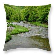 Rainy Day On Williams River Throw Pillow