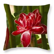 Red Ginger Lily Throw Pillow