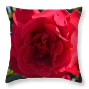 Red Rose Throw Pillow by Saifon Anaya
