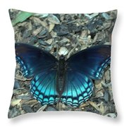 Red Spotted Purple Swallowtail Butterfly Throw Pillow
