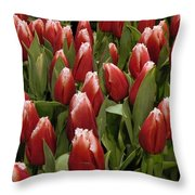 Red Tulip Heaven Throw Pillow