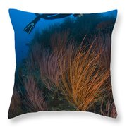 Red Whip Fan Coral With Diver, Papua Throw Pillow