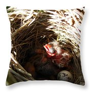 Red-winged Blackbird Babies And Egg Throw Pillow