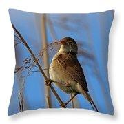 Reed Warbler Throw Pillow