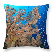 Reef Scene With Sea Fan, Papua New Throw Pillow