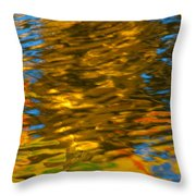 Reflection In Water. Throw Pillow