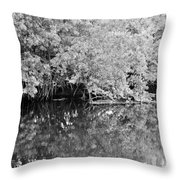 Reflections On The North Fork River In Black And White Throw Pillow