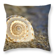 Resonance Of The Sea Throw Pillow
