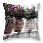 Ringling Courtyard Throw Pillow