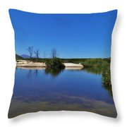River Namaqualand Throw Pillow