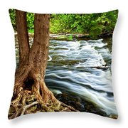 River Through Woods Throw Pillow