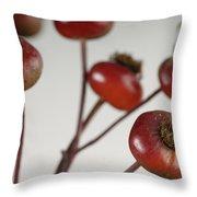 Rose Hips Rosa Rugosa Throw Pillow