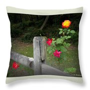 Roses And Fence  Throw Pillow