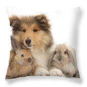 Rough Collie Pup With Two Young Rabbits Throw Pillow