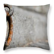 Rusty Ring Throw Pillow