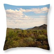 Saguaro National Park Az Throw Pillow