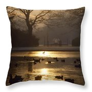 Saint Stephens Green, Dublin, Co Throw Pillow