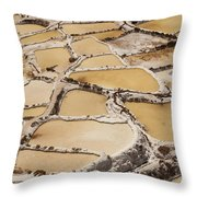 Salt Spring And Incan Throw Pillow