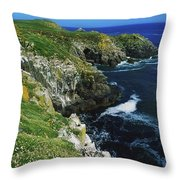 Saltee Islands, Co Wexford, Ireland Throw Pillow