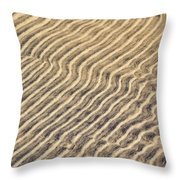 Sand Ripples In Shallow Water Throw Pillow