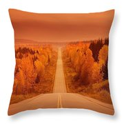 Scenic Highway Throw Pillow