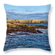 Schoodic Point Acadia National Park Throw Pillow