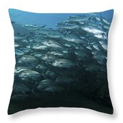 School Of Trevally Swimming By, Bali Throw Pillow
