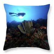Scuba Diver Swims By Some Large Sponges Throw Pillow