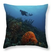 Scuba Diver Swims Underwater Amongst Throw Pillow