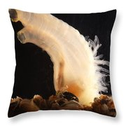 Sea Vase Throw Pillow