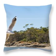 Seagull Spreads Its Wings On The Beach Throw Pillow