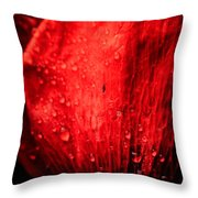 Seeing Red Throw Pillow