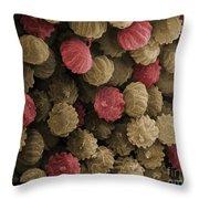 Sem Of Ergot Throw Pillow by Ted Kinsman