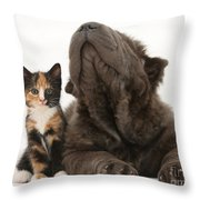 Shar Pei Puppy And Tortoiseshell Kitten Throw Pillow