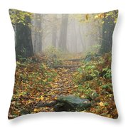 Shenandoah National Park In Virginia Throw Pillow