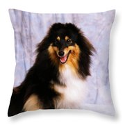 Shetland Sheepdog Portrait Of A Dog Throw Pillow