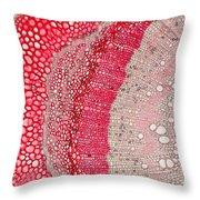 Silver Wattle Stem Throw Pillow