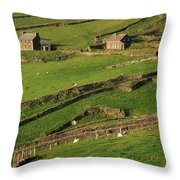 Slea Head, Dingle Peninsula, County Throw Pillow