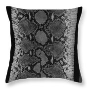 Snake Skin In Black And White Throw Pillow