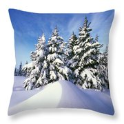 Snow-covered Pine Trees Throw Pillow
