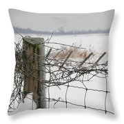 Snow Fence  Throw Pillow by Sandra Cunningham