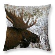 Snow Moose Throw Pillow