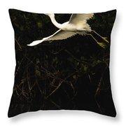 Snowy Egret, Florida Throw Pillow