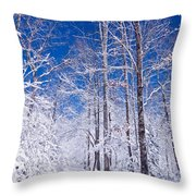 Snowy Path Throw Pillow by Rob Travis