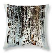 Snowy Woods Throw Pillow
