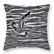 Soaring Gull Throw Pillow