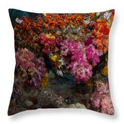 Soft Coral In Raja Ampat, Indonesia Throw Pillow