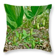 Solomon's Seal Wildflower - Polygonatum Commutatum Throw Pillow